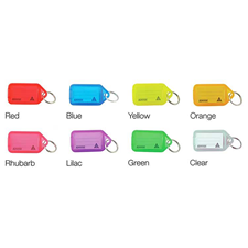 Picture of Kevron Giant Clicktags Key Tags Single Colours - Bag of 25